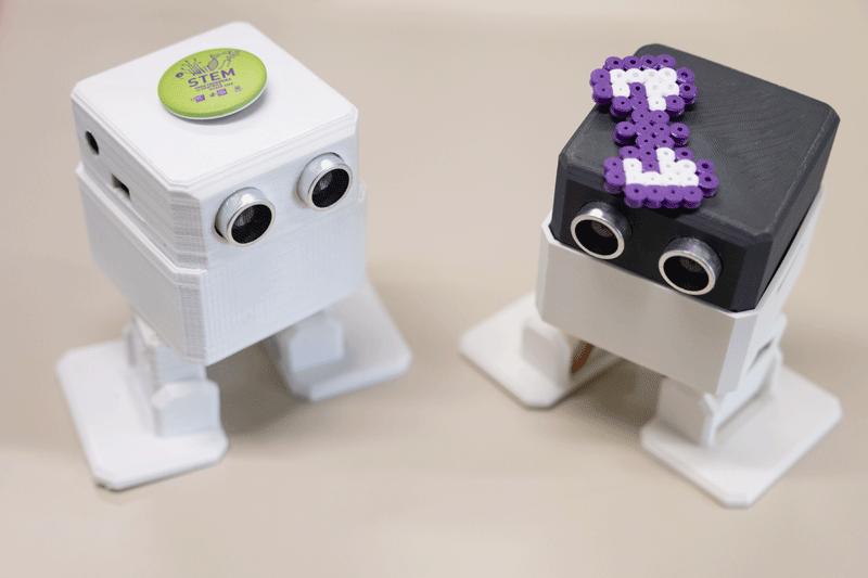 robots stem
