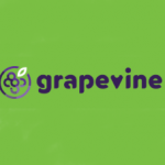 Proyecto GRAPEVINE