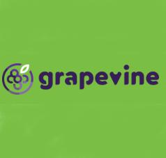 Proyecto GRAPEVINE