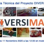 Proyecto DIVERSIMAR