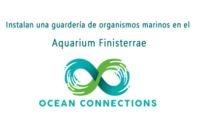 Ocean Connections Project