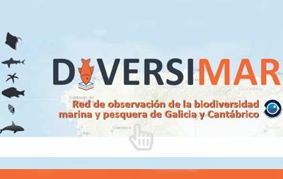 Biodiversidad marina en Galicia y Cantábrico